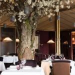 Geneva City Guide – Le Loti (La Réserve)